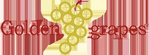 Logo trasparente piccolo